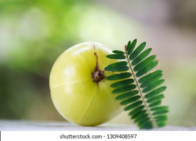 Indian gooseberry or amla, fresh fruits have medicinal properties and on natural background.