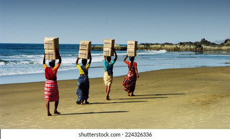 indian ladies working on the beach in Goa, India