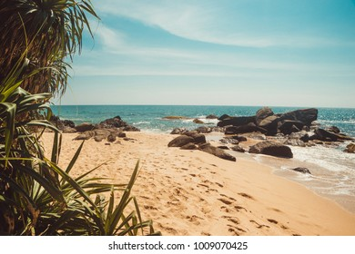 Indian Ocean Coast with stones and pandanus trees. Tropical vacation, holiday background. Deserted with footprints beach. Paradise idyllic landscape. Travel concept. Sri Lanka eco tourism. Copy space
