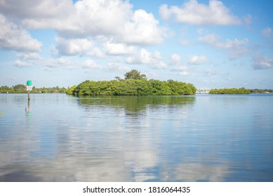 Indian River Lagoon Jungle Trail tropical paradise boating sky clouds water swamp wetlands trees nature outdoor Vero Beach, Florida