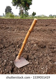 Indian shovels or hand hoe with wooden handle a tool for farm soil digging.