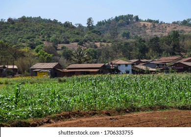 Indian small houses in village surrounded by agricultural land