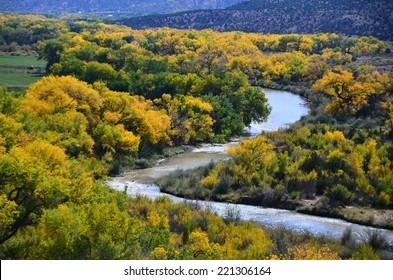 Indian Summer near Santa Fe, New Mexico