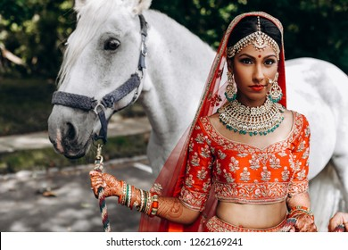 Indian wedding. Attractive Hindu bride in traditional red lehenga walks with white horse outside in a sunny day