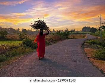 Indian woman walking home with fire wood in India at sunset
