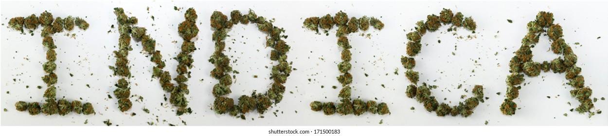 "Indica Spelled With Marijuana. The word ""Indica"" spelled out with real marijuana."