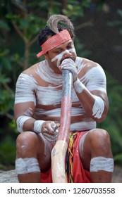 Indigenous Australian man play Aboriginal  music on didgeridoo, instrument in Queensland, Australia.