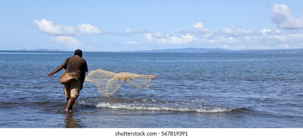 Indigenous Fijian fisherman throwing fishing net in Vanua Levu, Fiji. Real people. copy space. Panoramic