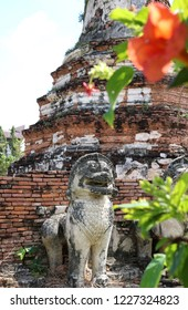 Indirect view through tropical flowers of the ancient ruins of Wat Thummikarat in Ayutthaya, Thailand