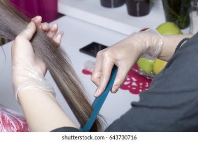 Individual Entrepreneur Provides Services Home Hairdresser