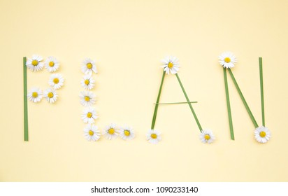 Individual plan concept word on flowers background.