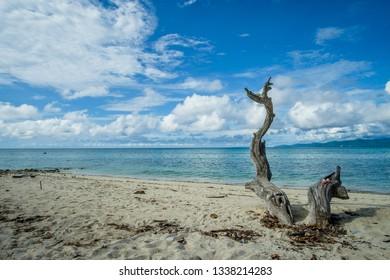 Indonesia Beach tropic