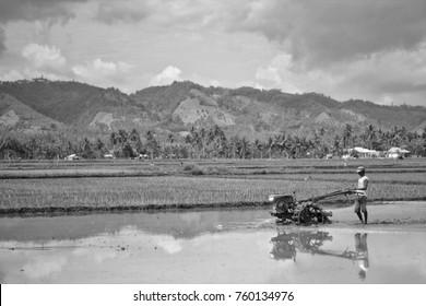 Indonesia Farmer, Gorontalo, Indonesia