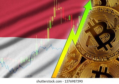 Indonesia flag and cryptocurrency growing trend with many golden bitcoins