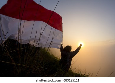 indonesia, independence day and big flag