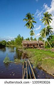 INDONESIA, IRIAN JAYA, ASMAT PROVINCE, AMANAMKAY VILLAGE - 13 JUNE 2016: men's house in the traditional village of Asmat tribe on the river. On June 13, 2016 Amanamkay Village, Asmat province, Indones