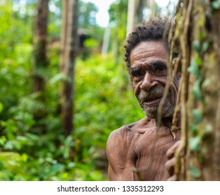 Korowai Tribe Images, Stock Photos & Vectors | Shutterstock