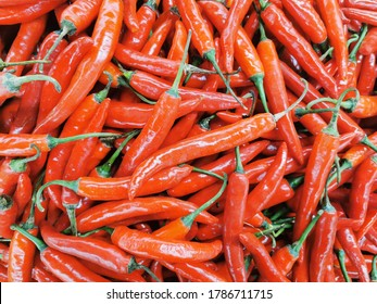Indonesian hot red chilly at market
