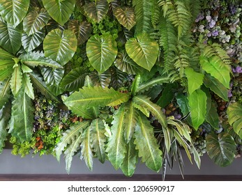 Indoor Artificial Vertical Gardens with Fake Plants on Walls. tree from plastic plants ornament design on the wall. Concept for decoration on the wall of ecology design interior. Select focus