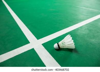 Indoor Badminton ball on green Badminton court