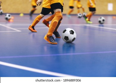 Indoor football training for youth team. Young boys with soccer balls running on wooden parquet. Indoor football soccer school practice. Kids in soccer sportswear - Shutterstock ID 1896889306