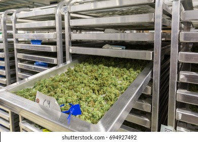 Indoor Marijuana Grow and Dispensary in Denver Colorado,  2017