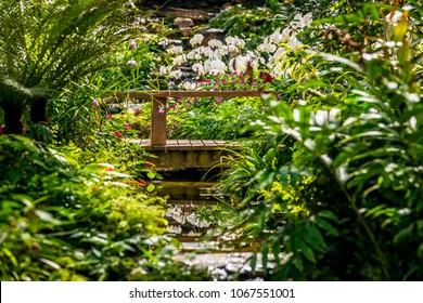 Indoor park Orchid Garden