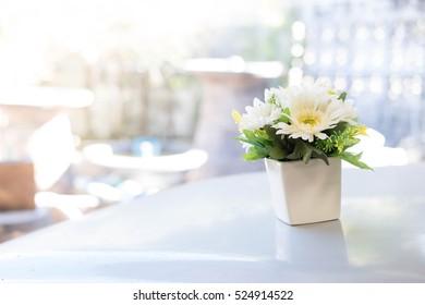 Indoor plant in a bathroom window