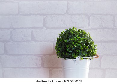 Indoor plant in white can, White brick wall, minimal style.