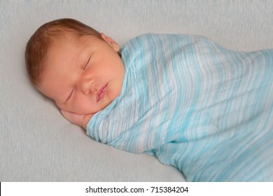 indoor portrait of adorable european newborn baby