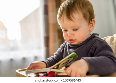 Indoor portrait of baby playing reading first child book