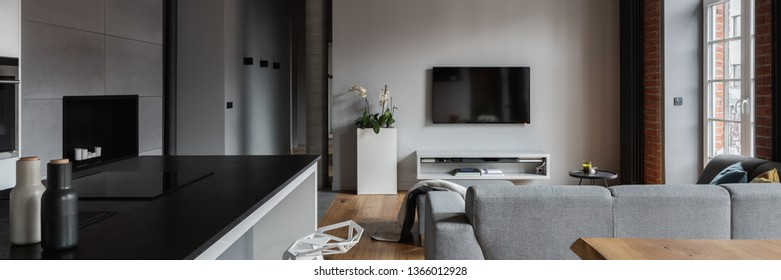 Industrial apartment with kitchen island and open living room, panorama