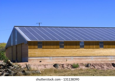 industrial cattle shed with solar panels on the roof