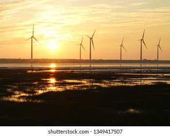 Industrial concept : Wind farm generating power or energy during sunset