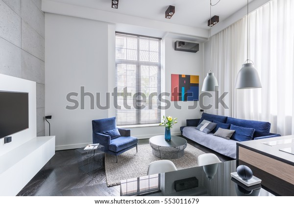 Industrial design in living room with tv and blue furniture set