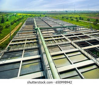 Industrial and domestic Sewage Treatment plant