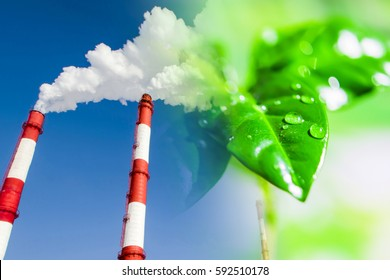 Industrial factory chimneys on background of green plants . The concept of relevance for the protection of nature .