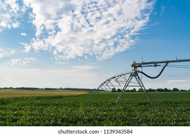 Industrial irrigation lines over soy bean plants.  Putnam County, Illinois, USA