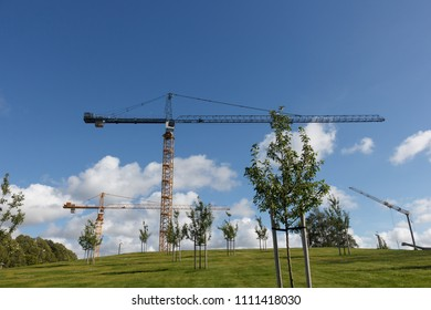 Industrial tower cranes. The green hill is on the front.