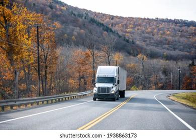 Industrial white big rig semi truck tractor transporting cargo in dry van semi trailer climbing uphill on the winding road with red and yellow maple trees on the hills in Massachusetts New England