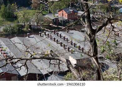 Industriedach einer Industrieanlage mit Baum im Vordergrund - Shutterstock ID 1961306110