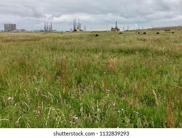 Industry, Seaton Carew Sand Dunes, Hartlepool, England