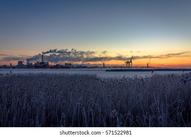industry with smoke chimneys and nature reed landscape in sunrise