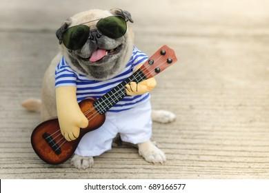 Indy Musician Guitarist pug dog.(Funny pug dog wearing indy musician costume with Ukulele.)