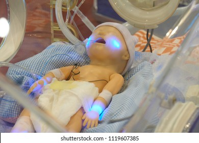 Infant dummy in neonatal intensive-care unit for medical students study