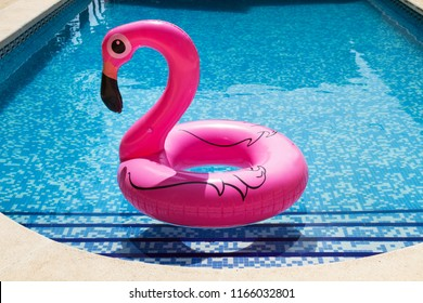 Inflatable pink flamingo in a swimming pool