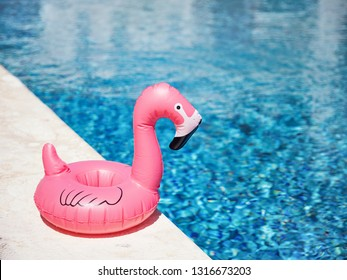 Inflatable toy of pink flamingo near swimming pool at poolside, nobody