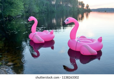 Inflatable toy pink flamingo on the lake