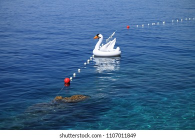 Inflatable white swan float in Adriatic sea , Croatia