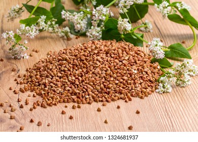 Inflorescences of buckwheat plants and a bunch of buckwheat grains